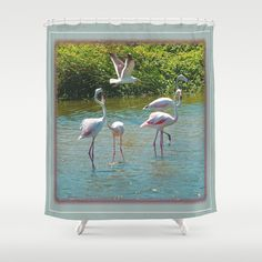 Lovers Shower Curtain by crismanart Shower Curtains, Lovers, Frame, Home Decor, Picture Frame, Decoration Home, Room Decor, Frames, Home Interior Design