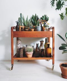 bar cart with succulents