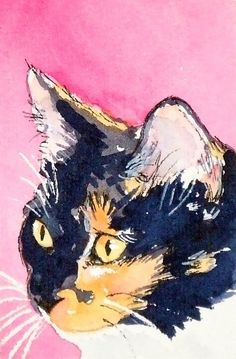 It's Hazel !!!   Cali ACEO calico cat art print by christydekoning on Etsy