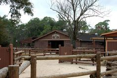 There is a hidden gem over at Fort Wilderness Campground and it is called the Tri-Circle-D Ranch. If you are looking for an escape from the hustle and bustle of the parks this is a great place to explore.