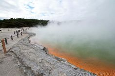 New Zealand Travel - Roturoa - Wai-O-Tapu Geothermal Wonderland