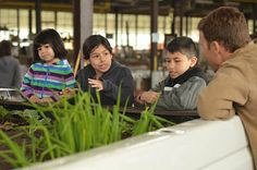 Educational mini-farms grown on pickup trucks teaches youths and their families about heathly eating