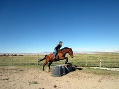 VIDEO - Parelli Inspirational Minute - Fun & Creative Jumping!!   How many unique ways can you jump your horse?   http://youtu.be/_sUFdyq3fDw
