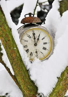 Gorgeous Scene with the clock in the snowy tree branch