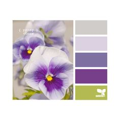 Design Seeds ❤ liked on Polyvore featuring design seeds, color palettes, colors, flowers and filler