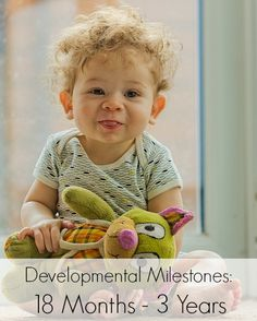 Major Developmental Milestones for Toddlers Aged 18 Months - 3 Years | The Jenny Evolution