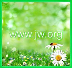 ♥••♥   JW.org