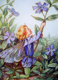 1930s Periwinkle FAIRY CICELY Mary BARKER Ideal for Framing. $9.00, via Etsy.