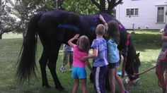 kids and horse - Google Search