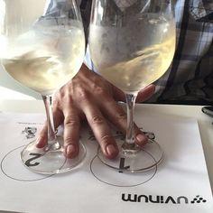 Viernes noche empieza el fin de semana... Ponemos las copas a pares y la cámara lenta para disfrutar el doble. Salud!  #Uvinum #winelovers