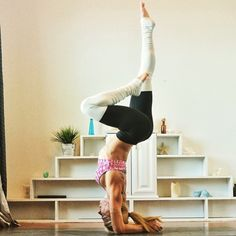 hollowback forearm handstand with one leg straight up and one leg bent by kerri verna. Pure Yoga, Handstand, Namaste, Ballet Skirt, Sporty, Poses, Pure Products, Legs, Instagram Posts