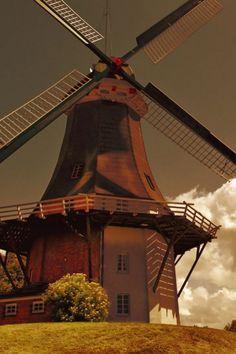 Moinhos de vento na Holanda móvel Wallpaper - Mobiles parede