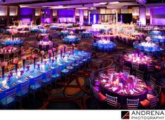 ANDRENA PHOTOGRAPHY - Anaheim Marriott Indian Wedding Photography: What do you do when you have 900 people attending your reception? You find a massive ballroom. Cinal Bhindi's wedding to Taju Patel was a lovely affair, and it was a privilege to shoot. The ceremony itself took place at the Long Beach Hyatt, but the reception, which took place the next day, required a bigger venue. In this case, the Anaheim Marriott provided the perfect space. Expert coordination was provided by Jeannie…