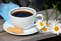 kahvia ja päivänkakkaroita | Kahvipannun taikaa -kuvakisa