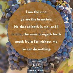 KJV Verse of the Day: John 15:5-8