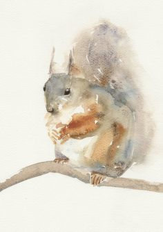 Squirrel  Animal Art print watercolor painting от FrancinaMaria, $9.50