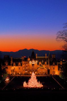 The problem with visiting The Biltmore Estate at Christmas?  You'll never wanna leave.