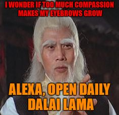 """""""Daily Dalai Lama"""" Alexa skill has 125+ quotes from the Dalai Lama on compassion, kindness, love, happiness and joy. Learn how you can help save Tibet by reading """"Restoring Tibet: Global Action Plan to Send the Dalai Lama Home"""" available on Amazon. #dalailama #tibet #selfhelp #selfimprovement #compassion #lovingkindness #love #happiness #quotes #alexaskills Alexa Skills, How To Grow Eyebrows, Happiness Quotes, Dalai Lama, Tibet, Self Improvement, Law Of Attraction, Self Help, Compassion"""