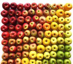 Food Gradients Album on Imgur