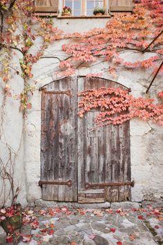 ♔ France | Natalie McComas