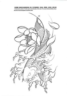 1000 images about koi tattoo designs on pinterest koi for Dragon koi for sale