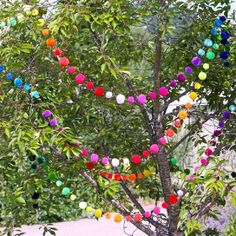 Stunningly bright colours make these pompom garlands the perfect decoration for your party, garden, bedroom or strung around the house to liven up the place!Made from a super soft acrylic yarn these pompom bunting strings are in such beautiful colours, they are guaranteed to make you smile! Hanging from trees they make the perfect party accessory. Have them in the hallway to greet your guests or string around the Aga to liven up the kitchen. Decorate the office shelves or childrens bedrooms…