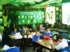 awesome rainforest classroom! Rainforest Classroom, Rainforest Biome, Rainforest Project, Amazon Rainforest, Class Displays, School Displays, Classroom Displays, Ks2 Classroom, Classroom Themes