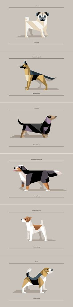 Low poly dogs by Josh Brill Dog Illustration, Digital Illustration, Sketch Manga, Design Art, Web Design, Inspiration Artistique, Polygon Art, Graphic Art, Graphic Design