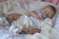 "~*Katescradles*~ "" Molly "" by Tasha Edenholm - Reborn Baby Doll Girl - Beautiful"