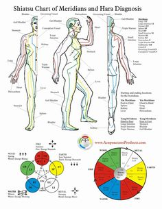 Acupuncture Meridian Chart Meridian Charts Acupuncture