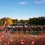 Oslo Autumn editon - maHz