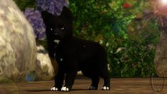 DeviantArt: More Like Sims 3 Pets - Krahviik Dog 02 by ...