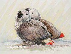 Paintings of parrots, parrot painting, Parrot art