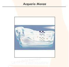 IMPROBABLE OBJECTS - ACQUARIUS MONZA (ANONYMOUS)  Graduation Thesis, Politecnico di Milano, 2005.  Demis Valle