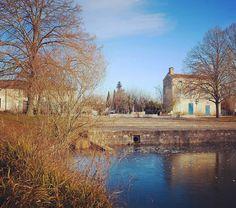 Au bord du marais poitevin gel du canal à Bouillé Courdault #igersniort #igersfrance #vendee