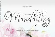Mandailing Script Mandailing Script a new fresh & modern script with a handmade calligraphy style, decorative characters and a dancing baseline! So beautiful on Best Script Fonts, Cursive Fonts, Script Logo, Handwriting Fonts, Calligraphy Fonts, All Fonts, Modern Calligraphy, Beautiful Calligraphy, Caligraphy