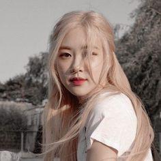 Aesthetic Roses, Kpop Aesthetic, Aesthetic Photo, Aesthetic Girl, Kpop Girl Groups, Korean Girl Groups, Kpop Girls, K Pop, Foto Rose