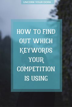 Want a trick to help you spy on your competition?  I can show you page titles, keywords, and even plugins they are using!  Click over to the blog for more on this easy, anyone can do it, coding trick!