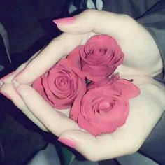 Industry Experts Give You The Best Beauty Tips Ever Beautiful Roses, Beautiful Hands, Best Beauty Tips, Beauty Hacks, Girlz Dpz, Stylish Dpz, Stylish Girl Pic, Girly Pictures, Love Rose