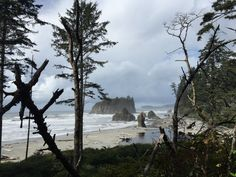 Ruby Beach: Itching for a Pacific Northwest road trip? Get this detailed 6-day Olympic National Park Itinerary filed with tips for the best hikes, campsites, beaches, & food!
