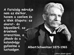 From breaking news and entertainment to sports and politics, get the full story with all the live commentary. Albert Schweitzer, Daily Wisdom, Idioms, English Quotes, Sign Quotes, Motto, Picture Quotes, Einstein, Writer