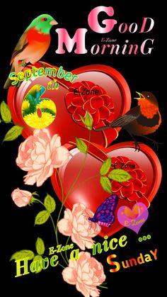 Happy Sunday Quotes, Days Of Week, Night Wishes, Good Morning, Gallery, Buen Dia, Bonjour, Bom Dia, Buongiorno