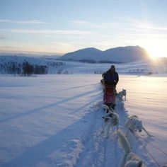 Lapland adventure. Tweedaagse husky sledetocht in Tromso Noorwegen. Te boeken op AdventureTickets.nl