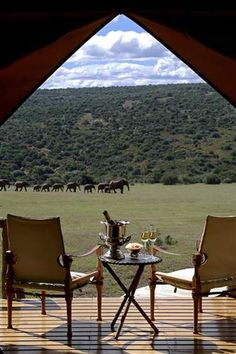 Glamping on the African Plain | Roses and Rust