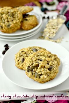 Oatmeal Chocolate Chip Cookies. I need to make these tonight!