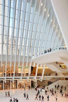 oculus-world-trade-centre-transportation-hub-hufton-crow-7