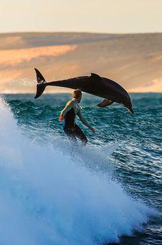 Man is in zee en er komt een dolfijn ineens voorbij.