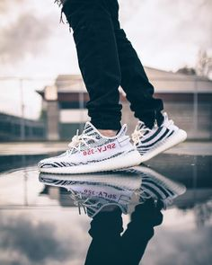 YZY Zebra reflection