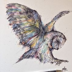 Colorful Owl - Watercolor + Ink