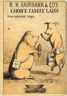 N. K. Fairbank & Co's choice family lard from selected hogs